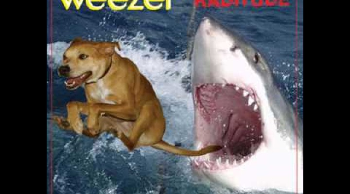 The Weezer Raditude Dog MEME is born!!