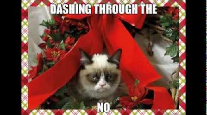 Grumpy Cat Christmas Memes With Xmas Music